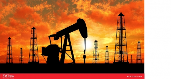 Oil Price Slips on Hints of Imposing Crude Imports Taxes